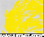 stimolazione_basale_logo